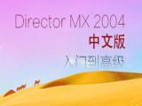 DirectorMX2004中文入门到高级视频教程