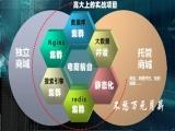 大型分布式电商项目视频教程