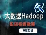 Hadoop大数据从入门到精通(行业最强,备javaee)视频教程