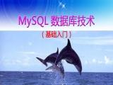 MySQL数据库技术应用视频教程