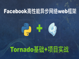 Python之Tornado基础+项目实战视频教程