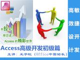 Access高效开发(最专业的Access行业系统开发)视频教程