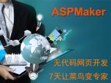 零代码开发ASP网页系统只要3分钟视频教程