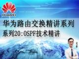 华为路由交换精讲系列20:OSPF技术精讲 [肖哥]视频课程