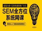 SEM搜索引擎竞价全方位系统网课视频教程