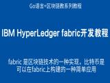 第六阶段 IBM HyperLedger fabric开发教程